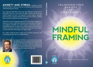 Mindful Framing Book Cover