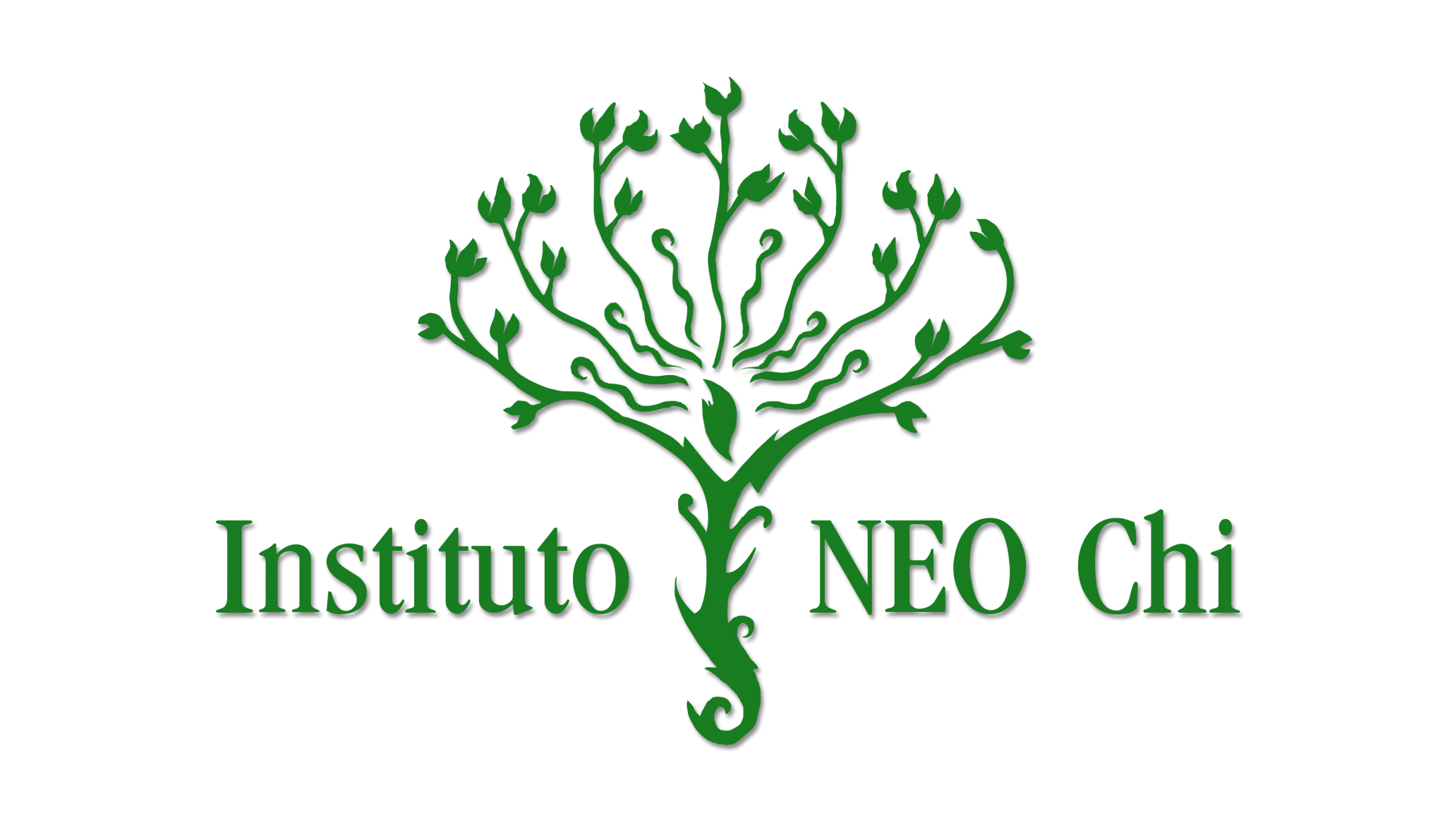 The NEO Chi Institute